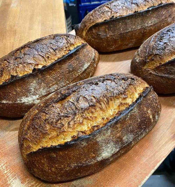 Cisco Sourdough Loaves