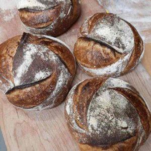 Wild Nancy Sourdough Loaves